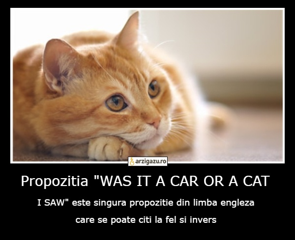 "Propozitia ""WAS IT A CAR OR A CAT  I SAW"" este singura propozitie din limba engleza 