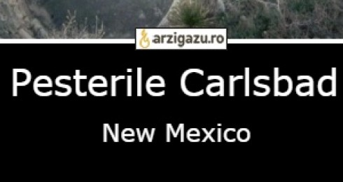 Pesterile Carlsbad New Mexico